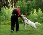 Первые тренировки июнь 2010